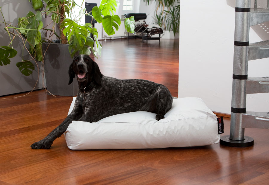 Dogbed Classic