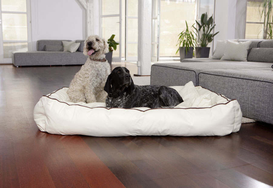 Dogbed Leather
