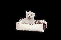 Hundebett Leather in der Größe S