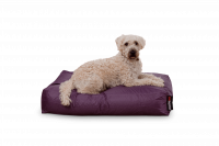 Dogbed Classic - Purpur