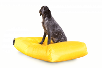 Gelb - Dogbed Classic XXL