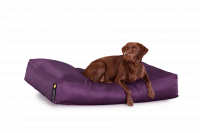 Purpur - Dogbed Classic XXL