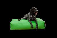 Dogbed Classic - Grün